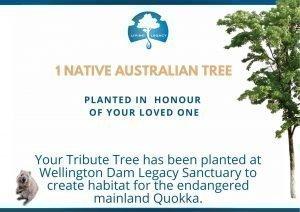 Tribute Tree