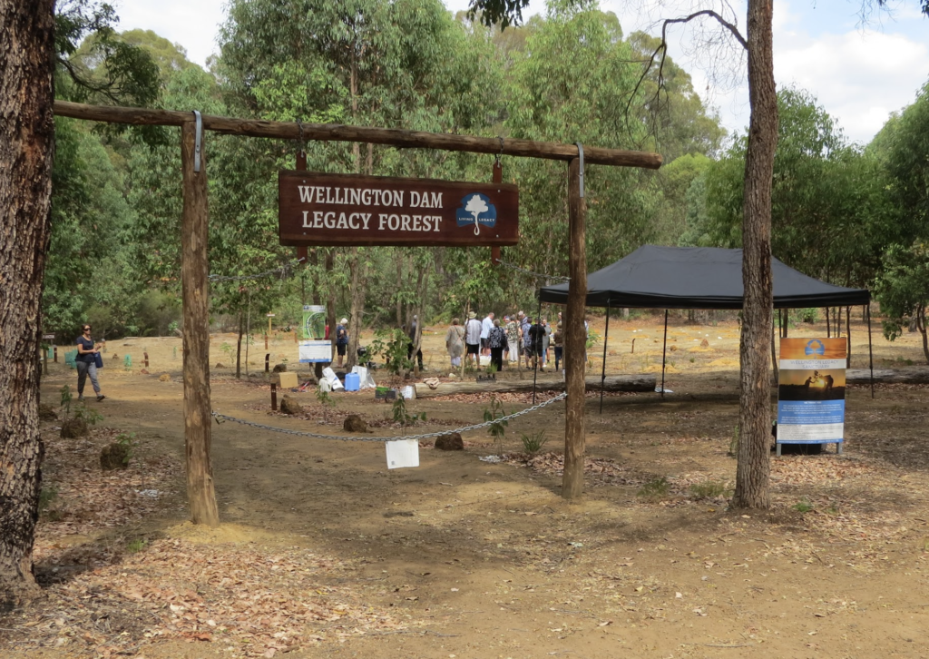 Entrance to Legacy Forest